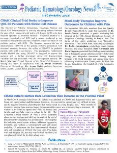 Heme-Onc-Newsletter-December-2015-236x300